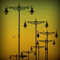 Portfolio Images. Lamp Silhouettes, Ryde, IOW.