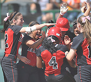 Elyria vs. North Canton in a state semifinal game at Firestone Stadium in Akron on June 3, 2011.