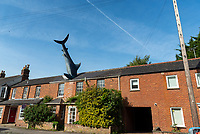 The Headington Shark  ,oxfordshire photo by Mark Anton Smith