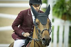 Mohammed Bassem Hassan, (QAT), Primeval Dejavu <br />  Longines FEI World Cup™ Jumping Final Las Vegas 2015<br />  © Hippo Foto - Dirk Caremans<br /> Final III round 2 - 19/04/15