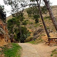 Europe, Spain, Novelda. Pathway up Mola Hill.