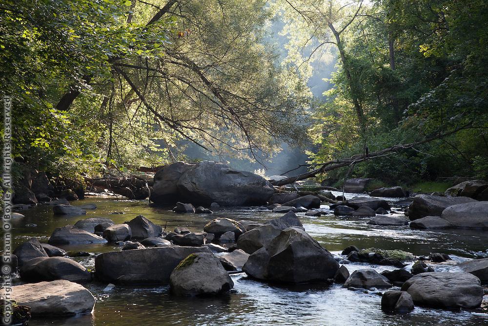 Along Housatonic River, Dalton, MA
