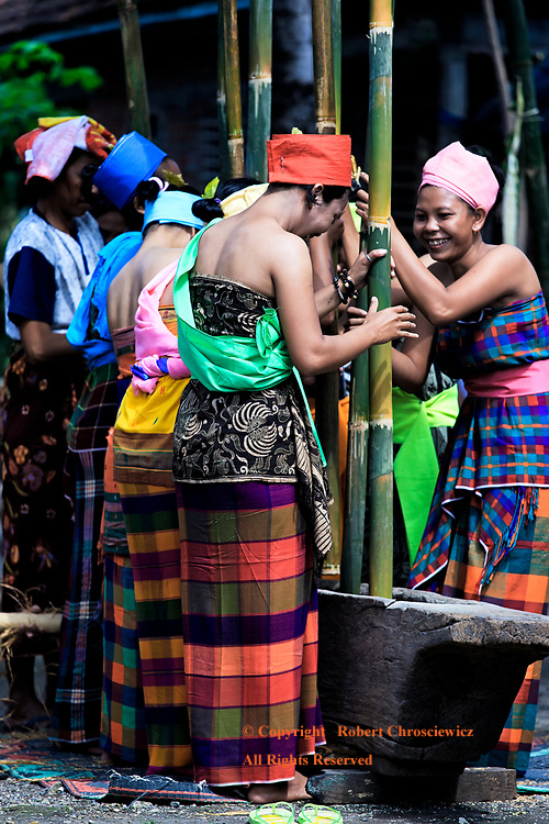 Maulid Nabi Celebration: The village women in traditional dress, perform a harvest ceremony in which they pound rice in a long wooden vessel with bamboo poles and this also coincides with the celebration of  Maulid Nabi (the Prophet Muhammad's birthday), Anyar Lombok Indonesia.