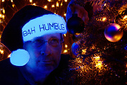 """A man with a glowing Christmas hat with the words """"Bah Humbuh"""" printed on it hangs a black ornament on a Christmas tree. Blacklight photography."""