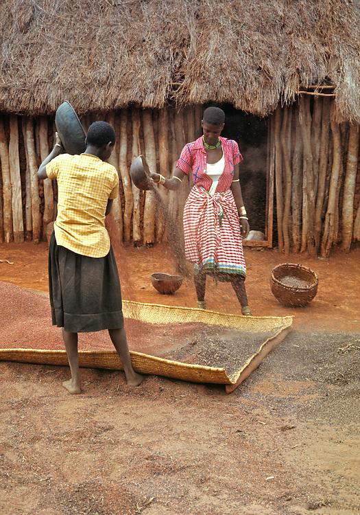 Native women winow grain outside their hut in the Mara region of Kenya.