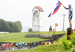 Fan during 5th Stage of 26th Tour of Slovenia 2019 cycling race between Trebnje and Novo mesto (167,5 km), on June 23, 2019 in Slovenia. Photo by Vid Ponikvar / Sportida