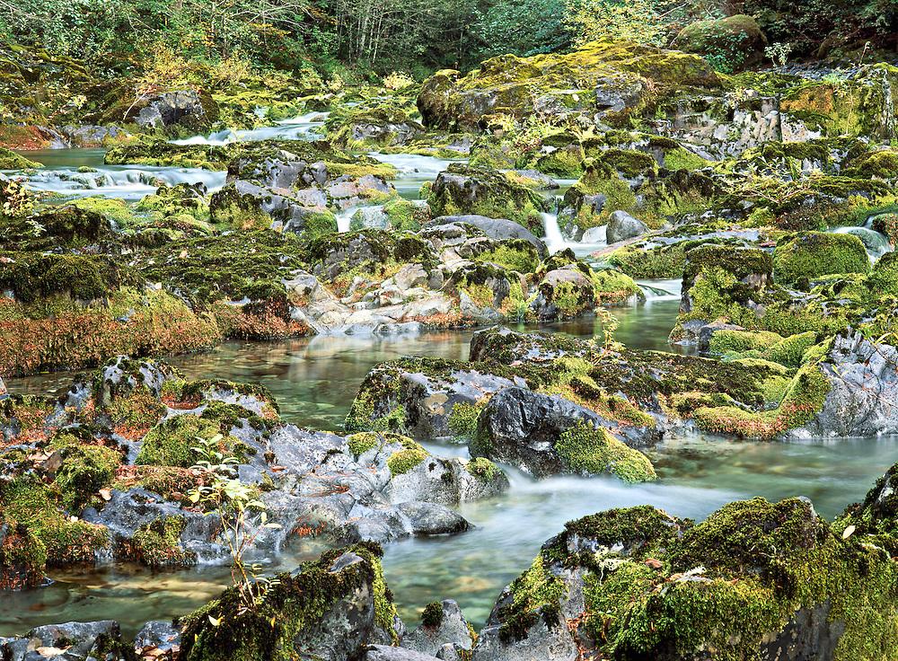 Autumn Portrait of Opal Creek, Opal Creek Preserve, Oregon Cascades