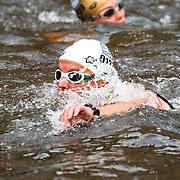 NLD/Amsterdam/20150906 - Amsterdam City Swim 2015, nr.137 Dirkjan Bussink