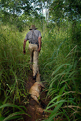 """Dairen Simpson, also known as """"Bwana Simba"""" or """"Mr. Lion""""drags a goat through the bush to attract lions  to his scent for his traps near Simana, Tanzania. Ami Vitale"""