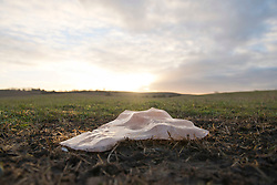 © Licensed to London News Pictures. 09/01/2019. Chesterton, Warwickshire, UK. A block of ice is seen on the grass in a muddy field as the sun rises at Chesterton Windmill on a cold frosty morning in Warwickshire, UK. Photo credit: LNP