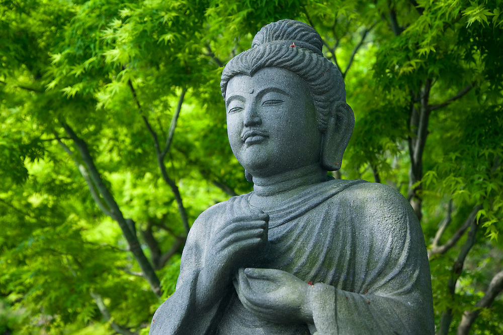 Asia, Japan, Honshu island, Kanagawa Prefecture, Kamakura, Hase-DeraTemple, Buddha statue with lush forest in background