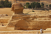 The Great Sphinx with a complex of rock cut tombs in the background (a cemetery).  Giza Pyramid complex and cemetery, outside Cairo, Egypt.