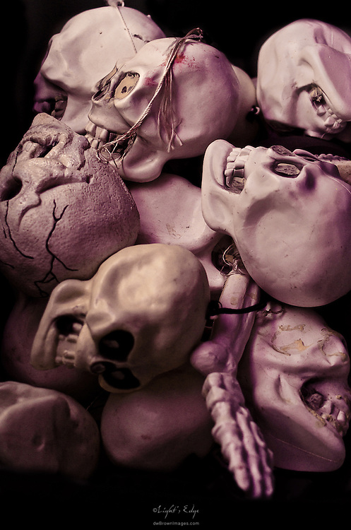 An assortment of skulls used as props sit piled in a bin.