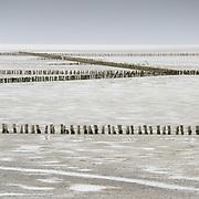 Poles on the mudflats of the Waddenzee near the ferry dam of Holwerd // Paaltjes op het wad bij de veerdam van Holwerd.