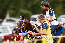 Visser Marijke, NED, Rouchka de Luc<br /> World Equestrian Games - Tryon 2018<br /> © Hippo Foto - Sharon Vandeput<br /> 13/09/2018