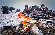 Yak drivers wake up after  foggy cold night, Tsochena, Snowman trek, northen Bhutan