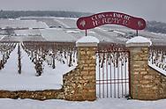 SERIES - UNRELIABLE-SIGHTINGS by PAUL WILLIAMS- Snowy vineyard Beaune