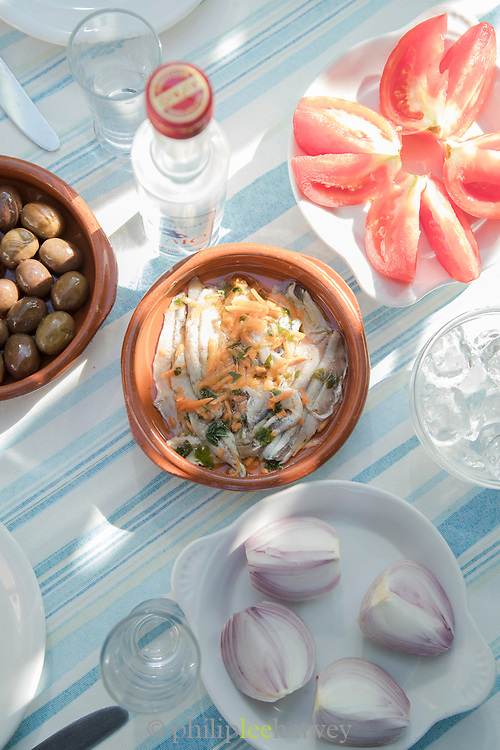 Salted sardines, tomatoes, onions and olives against blue striped table cloth, Lesbos, Greece