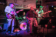 Carpenter Ants at Tierney's 5-17-2014