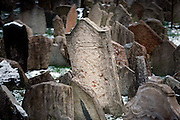 """SHOT 11/22/08 7:11:12 AM -  Tombstones in the Old Jewish Cemetery in Prague, Czech Republic. The Old Jewish Cemetery lies in the Josefov (the Jewish Quarter of Prague in the Czech Republic). It was in use from the early 15th century (the oldest preserved tombstone, the one of Avigdor Kara, dates back to 1439) until 1787. Its ancestor was a cemetery called """"The Jewish Garden"""", which was found in archaeological excavations under the Vladislavova street, New Town..The numbers of grave stones and numbers of people buried there are uncertain, because there are layers of tombs. However, it has been estimated that there are approximately 12,000 graves. The most important personalities buried in the Old Jewish Cemetery are Yehuda ben Bezalel known as the Maharal Rabbi Löw (d. 1609), Mordechai Maisel (d. 1601), David Gans (d. 1613) a David Oppenheim (d. 1736). Prague is the capital and largest city of the Czech Republic. Its official name is Hlavní m?sto Praha, meaning Prague, the Capital City. Situated on the River Vltava in central Bohemia, Prague has been the political, cultural, and economic centre of the Czech state for over 1100 years. The city proper is home to more than 1.2 million people, while its metropolitan area is estimated to have a population of over 1.9 million. Since 1992, the extensive historic centre of Prague has been included in the UNESCO list of World Heritage Sites. According to Guinness World Records, Prague Castle is the largest ancient castle in the world. Nicknames for Prague have included """"the mother of cities"""", """"city of a hundred spires"""" and """"the golden city"""". Since the fall of the Iron Curtain, Prague has become one of Europe's (and the world's) most popular tourist destinations. It is the sixth most-visited European city after London, Paris, Rome, Madrid and Berlin. Prague suffered considerably less damage during World War II than some other major cities in the region, allowing most of its historic architecture to stay true to form. It contai"""