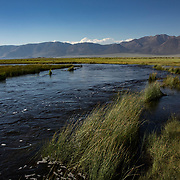 The Eastern Sierra's towns of Mammoth Lakes, June Lakes and surrounding areas weathered a historical and record producing winter snowfall that carried over into the summer. The Owens River was flooded making it difficult to fish.