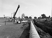 Kinsale Gas Pipeline to Dublin.1982.16.08.1982.08.16.1982.16th August 1982.The Kinsale to Dublin Gas Pipeline was scheduled to be commissioned in Jan '83..Image of one of the final sections of pipe being installed.The picture was taken at Inchicore,Dublin on the banks of The Grand Canal