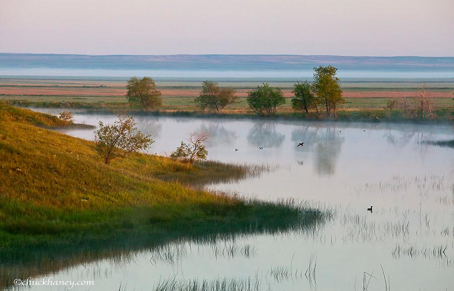 Wetlands pond near Medicine Lake, Montana, USA