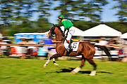 April 7, 2012 -  Union Army and Ross Geraghty at Stoneybrook Steeplechase, Raeford NC