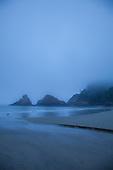 Yachats / Heceta Head - Oregon Coast - New