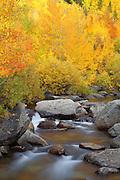 Eastern High Sierra's During Fall