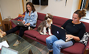 In the offices of Swift, a digital ad agency in Northwest Portland, Turbo shares the couch with chief operating officer Maren Elliott (left) and Carolin Harris, creative director. Randy L. Rasmussen/Staff
