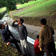 Hindu men drink in a park after work in Leicester, UK...The migrant workers have been in Britain for two years. ..Leicester has the biggest Gujarati population outside India and is expected to be the first city in the UK to have a majority non-white population within the next few years. It is one of the most ethnically-diverse cities in Europe. ....Picture taken April 2005 by Justin Jin
