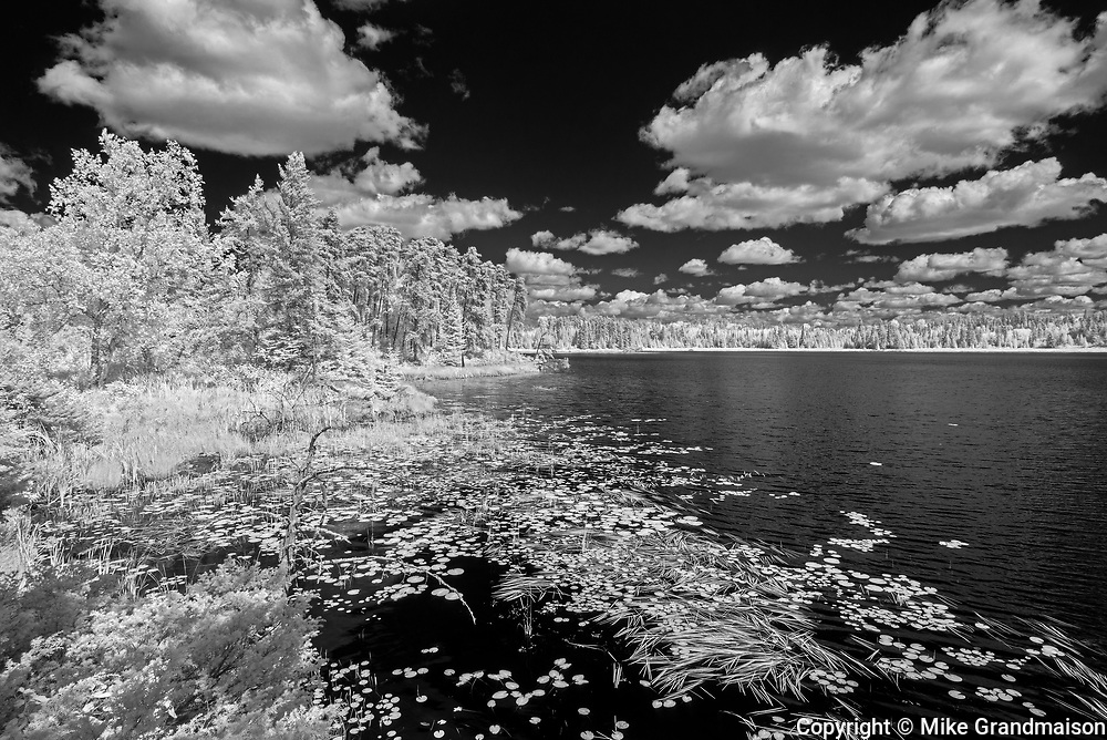 Clouds and aquatic vegetation on Isabel Lake<br />