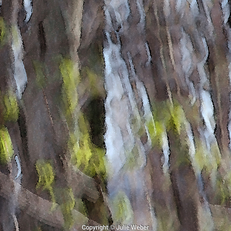 """This abstract expression of early Springtime trees with their spring-green leafing out takes you into the depths of the magical qualities of the forest.<br /> <br /> For IMAGE LICENSING just click on the """"add to cart"""" button above.<br /> <br /> Fine Art archival paper prints for this image as well as canvas, metal and acrylic prints available here:"""