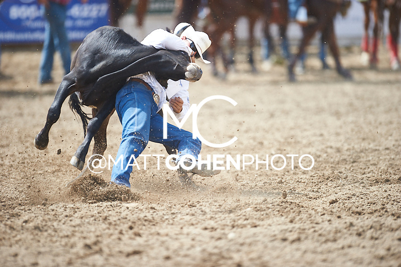 Steer wrestler Trevor Knowles of Mount Vernon, OR competes at the Redding Rodeo in Redding, CA.<br /> <br /> <br /> UNEDITED LOW-RES PREVIEW<br /> <br /> <br /> File shown may be an unedited low resolution version used as a proof only. All prints are 100% guaranteed for quality. Sizes 8x10+ come with a version for personal social media. I am currently not selling downloads for commercial/brand use.