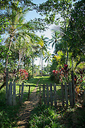 Entrance to village, Tufi, Cape Nelson, Oro Province, Papua New Guinea