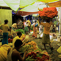 Asia, India, Calcutta. Scene from the flower market in Calcutta.