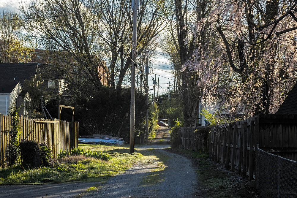 Alleyway, Tree Streets, Johnson City, Tennessee 20.03.25