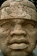 MEXICO, OLMEC CULTURES Jalapa Museum giant stone head