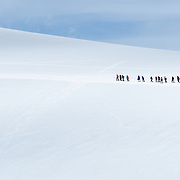 A line of tourists hikes single file over the ice on the side of a mountain at Neko Harbour, Antarctica.