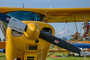Yellow Swan at the Hood River Fly In at the Western Antique Aeroplane and Automobile Museum