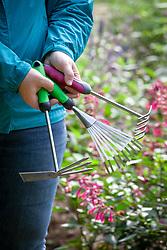 Small hand held rakes
