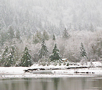 Big Beef Creek winter with a light snowfall, Hood Canal tidewater, Kitsap Peninsula, Puget Sound, WA, USA