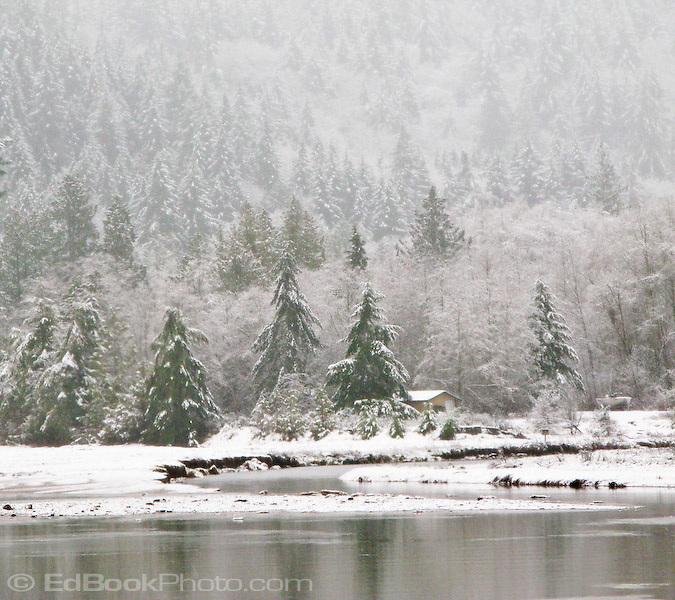 Big Beef Creek winter with a light snowfall, Hood Canal tidewater, Kitsap Peninsula, Puget Sound, WA, USA