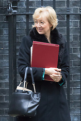 Downing Street, London, December 13th 2016. Environment, food and Rural Affairs Secretary Andrea Leadsom leaves the weekly meeting of the cabinet at Downing Street, London.