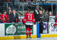 KELOWNA, CANADA - APRIL 8: Portland Winterhawks' assistant coach Oliver David stands on the bench behind head coach Mike Johnston as athletic therapist Rich Campbell exits for the bench for a player injury against the Kelowna Rocketson April 8, 2017 at Prospera Place in Kelowna, British Columbia, Canada.  (Photo by Marissa Baecker/Shoot the Breeze)  *** Local Caption ***