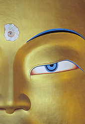 Asia, India, Jammu and Kashmir state, Ladakh, Leh, eye of Buddha on giant statue in Thikse monastery