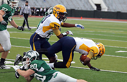 18 October 2014:  Zach Till (DB)  takes down Brandon Price during an NCAA division 3 football game between the Augustana Vikings and the Illinois Wesleyan Titans in Tucci Stadium on Wilder Field, Bloomington IL