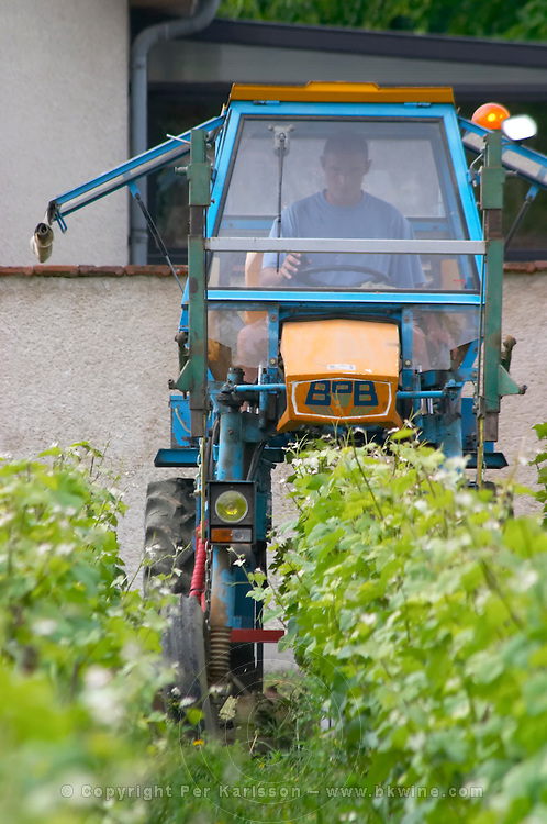 In the vineyard behind the house in the garden: a vineyard tractor (enjambeur) driving through the vineyard between the rows of vines to mechanically cut the grass instead of using week killer herbicides, Champagne Jacquesson in Dizy, Vallee de la Marne, Champagne, Marne, Ardennes, France, low light grainy grain