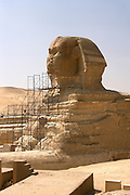 The Sphinx and the Great Pyramids at Giza  Giza, Egypt